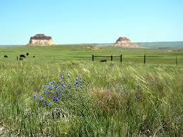 Friends of the Pawnee Grassland